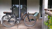 Hercules Paddelec E-Bike