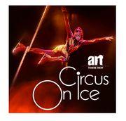 2 Tickets Karten Gutschein Circus
