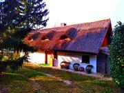 Bauernhaus mit Gästehaus in Ort