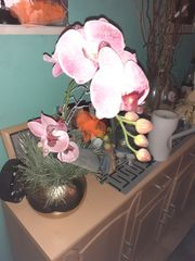 Weihnachts Orchideen XL im goldfb