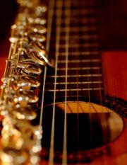 Gitarre sucht Flöte