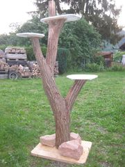 Eiche Naturholz Katzenbaum