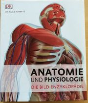 Anatomie und Physiologie Bildenzyklopädie