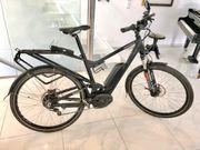 E-Bike Delite von Riese und