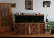 Aquarium 648L mit Unterbau und