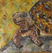 Schildkröte Acryl auf Leinwand 50cm