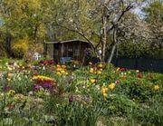 Suche Kleingarten Schrebergarten in Köln-Süd