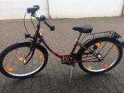 Pegasus Mädchen Fahrrad