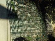 Doppelstabmattenzaun Gartenzaun grün -