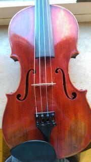 Moderne Geige Qualitätvolle Handarbeit gebaut