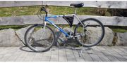 Damen Bridgestone Mountainbike mb5