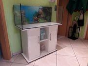 Juwel Aquarium 160 Liter