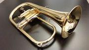 Yamaha Flügelhorn YFH 8310 Z