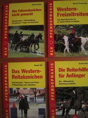 Pferdepraxis vom BLV