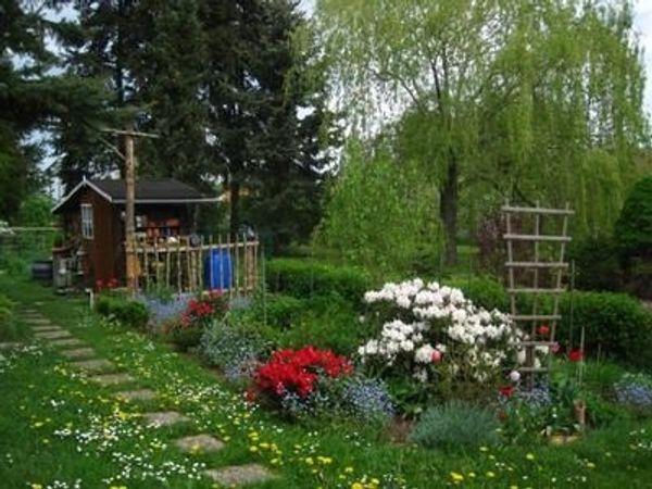 Suchen kleines Haus mit Garten / Haustiere erlaubt in Haßloch ...