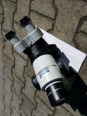 Wild Heerbrugg Mikroskop