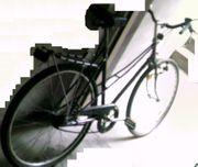 Citybike Tourenrad Hollandrad