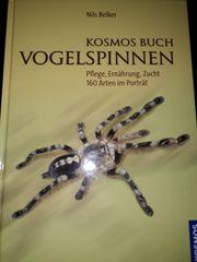 Vogelspinnen Buch