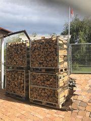 Brennholz Buche Eiche Brennfertig 1m3