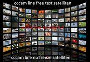 Dreambox-Linie cccam