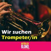 Trompeter in gesucht