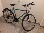 Herren-Fahrrad grün-lila