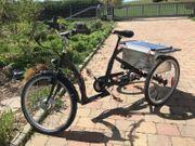 E-Trike Dreirad Lanztec Tiefeinsteiger Sport