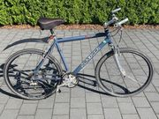 Gut gepflegtes Trekking-Bike 29 Zoll