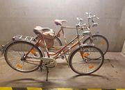 Vintage Fahrrad Pärchen