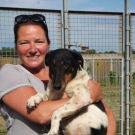 Betyar Glatthaar-Foxterrier-Mix Rüde geb ca: Kleinanzeigen aus Mommenheim - Rubrik Tierschutzvereine, -heime