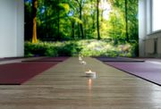 Räume für Yoga od Kleingruppentraining