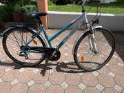 Damenrad Fahrrad für Damen Pegasus