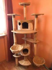 Katzenkratzbaum