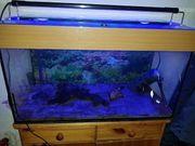 Aquarium 100 Liter