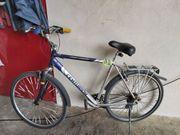 Fahrrad Centurion Trekking
