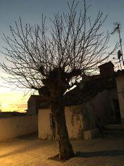 Spanien - Madrid - Haushälfte - Rendite 5