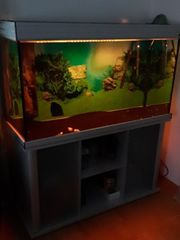 Aquarium 350 liter