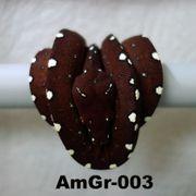 Morelia viridis Grüner Baumpython