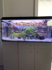 Aquarium 160l komplett