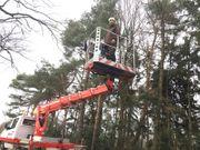 Baumarbeiten Baumdienst Baumservice Baumpflege
