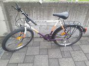 Fahrrad Kästle