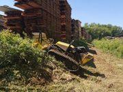 Verwilderte Grundstücke Roden Forstmulchen Wurzelfräsen