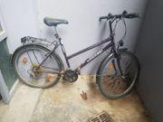 Fahrrad mittlere Größe lila