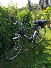 Herren Fahrrad Top Zustand