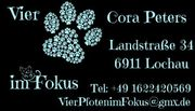 Biete Tierbetreuung Lochau Lindau Umgebung