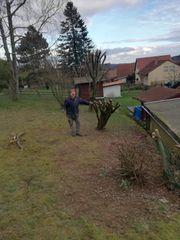Gartenarbeiten jedweder Art