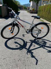 KTM Markenfahrrad Mountainbike Mountain Bike