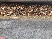 Getrocknetes und gespaltenes Brennholz aus