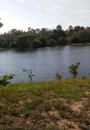 Brasilien 90 Ha Tiefpreis Grundstück -