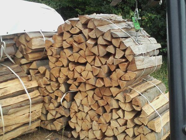 Brennholz Buche Eiche Esche aus
